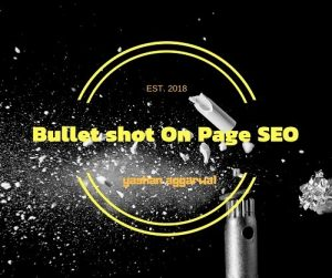 Bullet shot On Page SEO 1